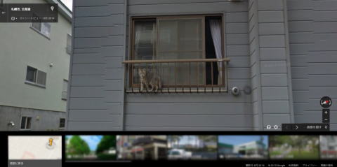 20150505_SAPPORO_NEKO_GoogleStreetview01